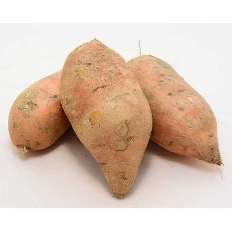 PATATE DOUCE Orange - 1kg