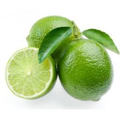 Citron vert - lime 1 pièce