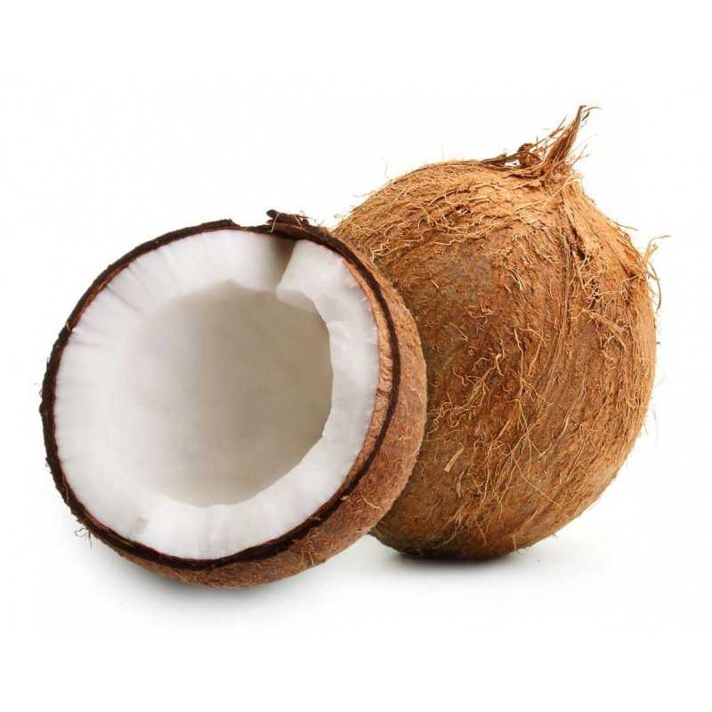Noix de Coco entière - 1 pièce environ 500-600 g